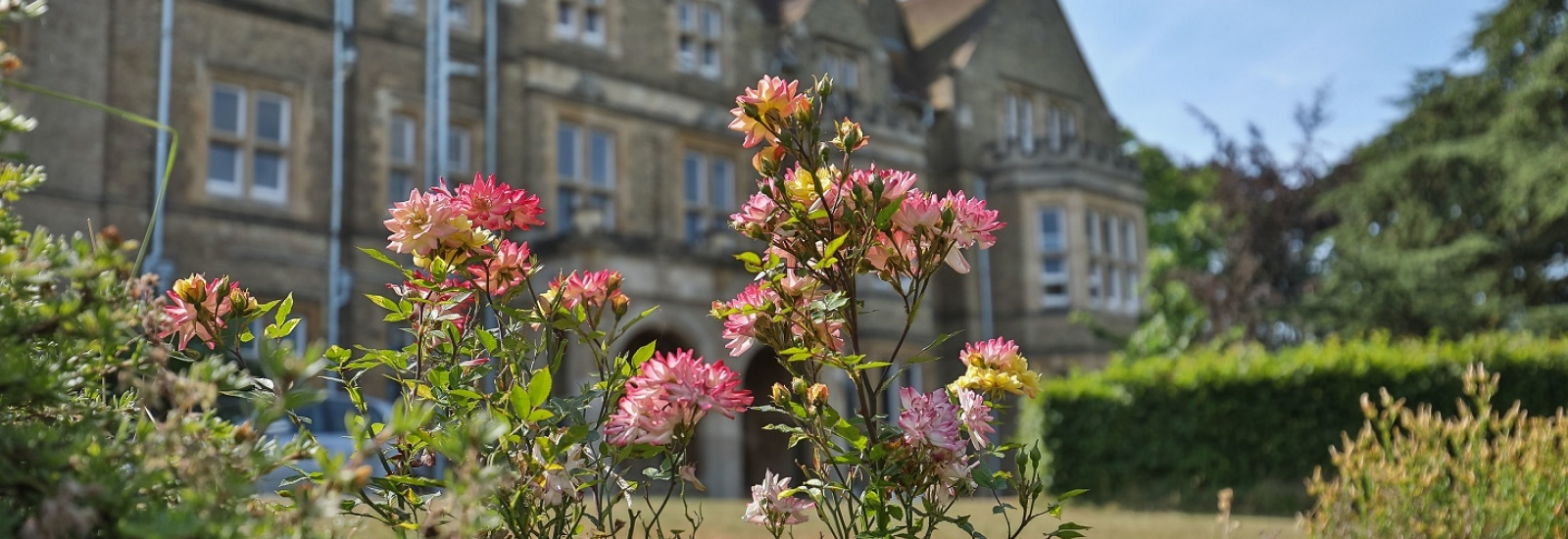 St Hilda's College South Lawn