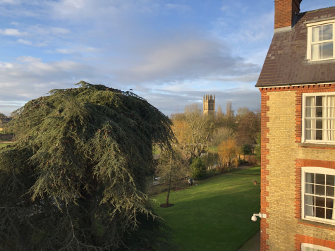 Looking from the Anniversary Building across Hall lawn towards the city